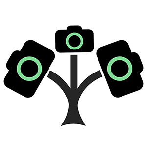logo pouze strom_300_square