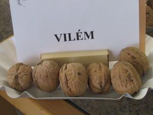 vilem