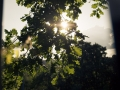 Monca_Petr_arboretum_rande_Brno_fotografování_páru01